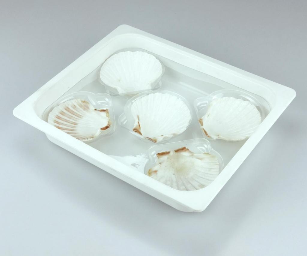 Contenitore plastica alimentari